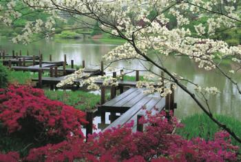 5 najpiękniejszych ogrodów