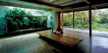 Akwariowe dekoracje - aquascaping