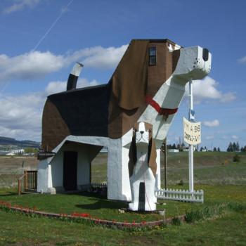Hotel w kształcie psa