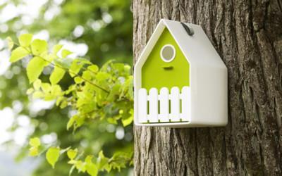 Inspirujący domek dla ptaków EMSA