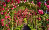 Ogród Butchart