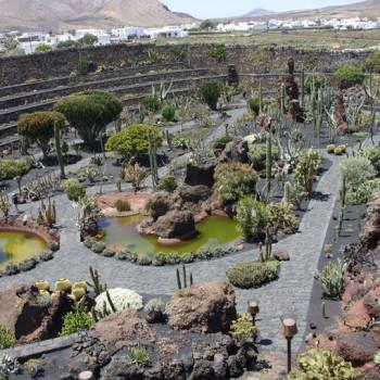 Ogród kaktusowy Jardín de Cactus