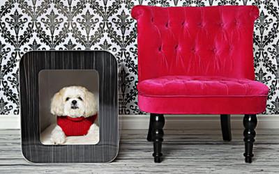 Pomysłowe kojce dla psów