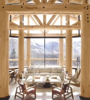 przytulny dom w Aspen 1