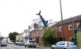 Rekin z Headington