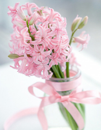 Wiosenne kwiaty doniczkowe