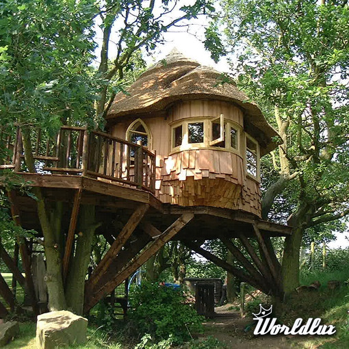 Luxury Tree House Plans: Brytyjska Firma Blue Forest Luxury Tree