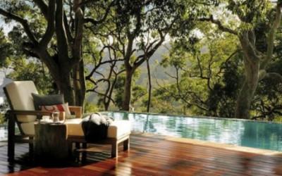 Dom wśród eukaliptusów 1