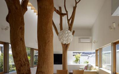 Drzewo w środku domu