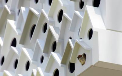 Japoński apartamentowiec dla ptaków