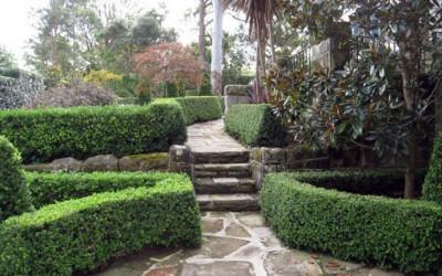 Kilka inspiracji do ogrodu