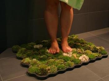 Moss carpet1