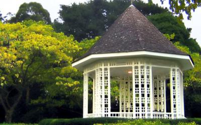 Ogród botaniczny prosto z Singapuru