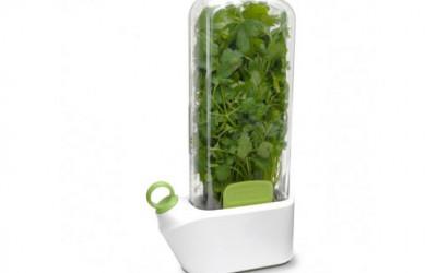 Pojemnik do świeżych ziół Prepara Herb Savor 1