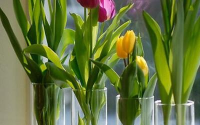 Wielkanocno-wiosenne dekoracje
