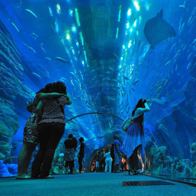 Największe oceanarium świata